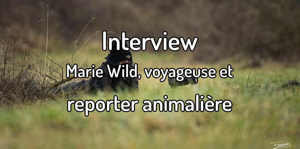 Interview – Marie Wild, voyageuse et reporter animalière