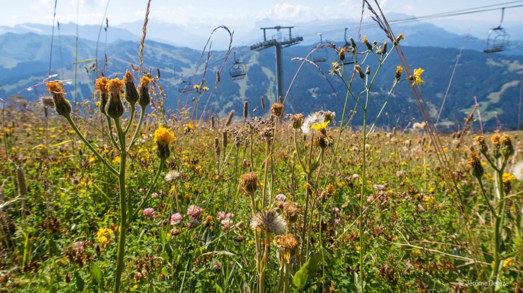 Portes du soleil - Voyager en Haute-Savoie - Station Les Gets