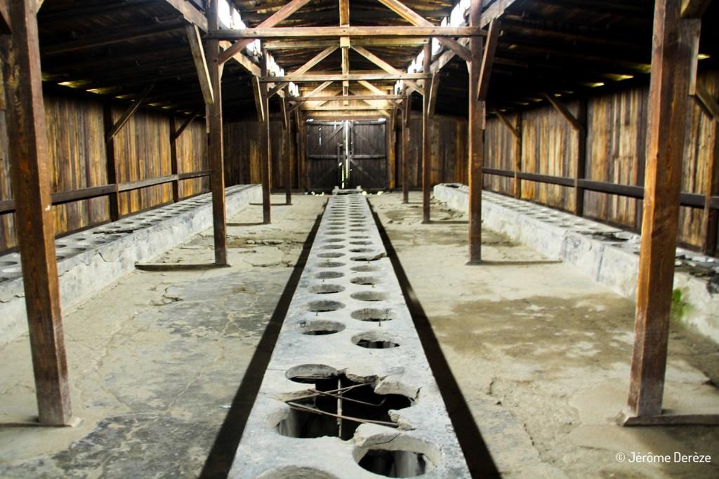 Toilette à Auschwitz-birkenau