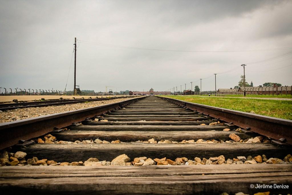 Rail à Auschwitz-Birkenau