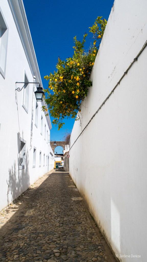 Rues d'Evora