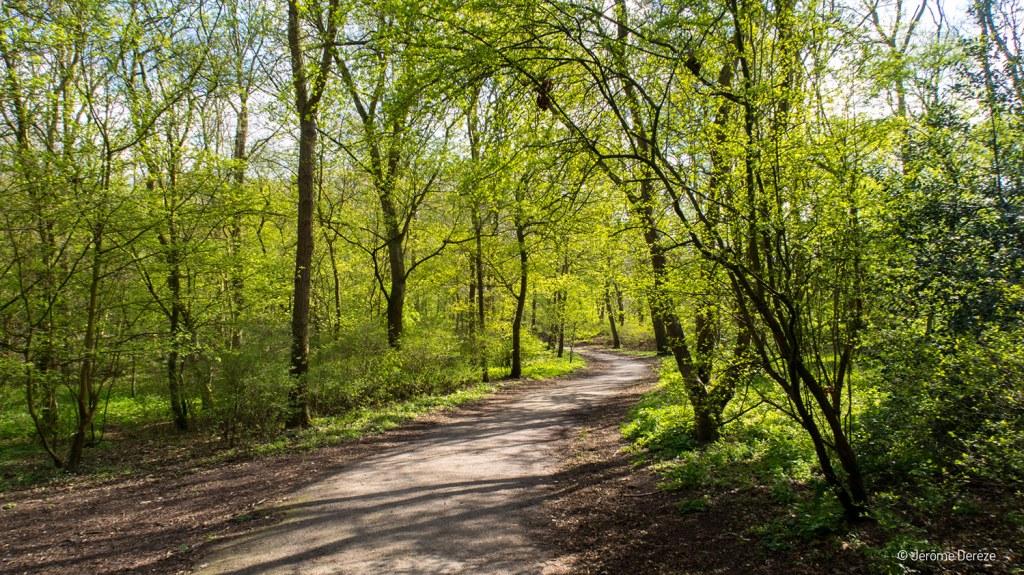 Parc Scheveningse