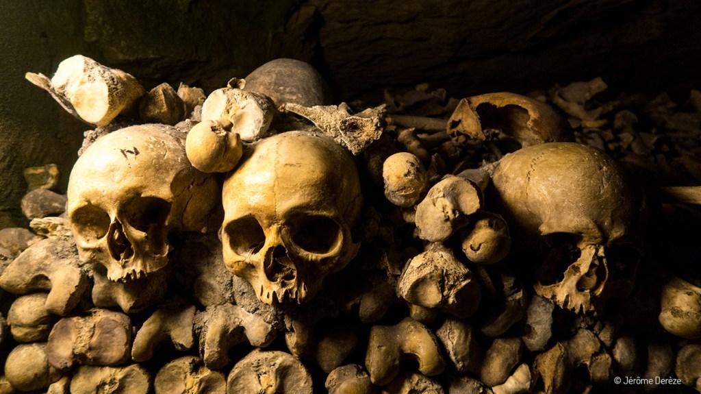 Crânes et ossements dans les catacombes de paris