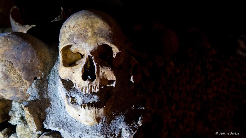 Crâne dans les catacombes de paris