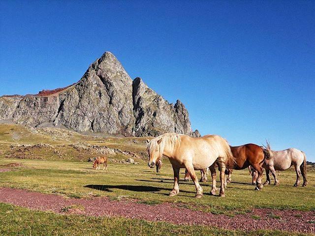 Fotografía montaña Pirineos by @salvaalario