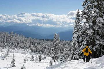 Progresar con raquetas de nieve / Foto: Milo Mcdowell