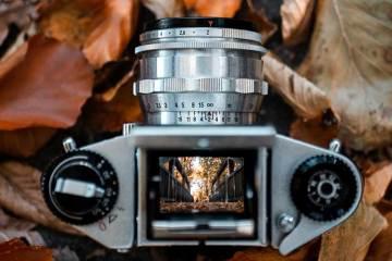 Consejos para la fotografía de otoño / Foto: Julius Drost