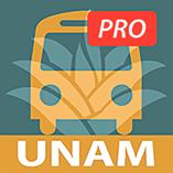 travesíaunam_Megaofrenda virtual de la UNAM, en 3D