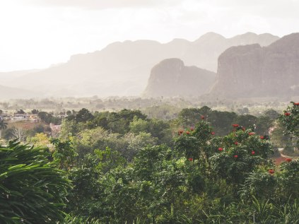 View from Las Jazmines over the valley of Viñales
