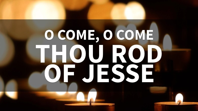 O Come, Thou Rod Of Jesse (Behind The Lyrics, Part 3)