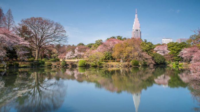 新宿御苑 春景