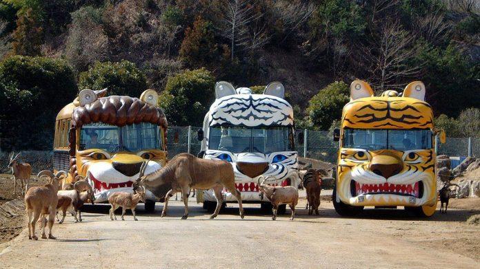 群馬野生動物園