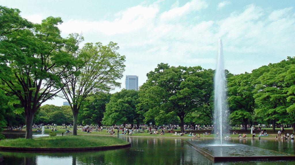 代代木公園, 【東京景點】代代木公園:東京賞櫻賞楓絕美景點 (適合親子、日本自由行)