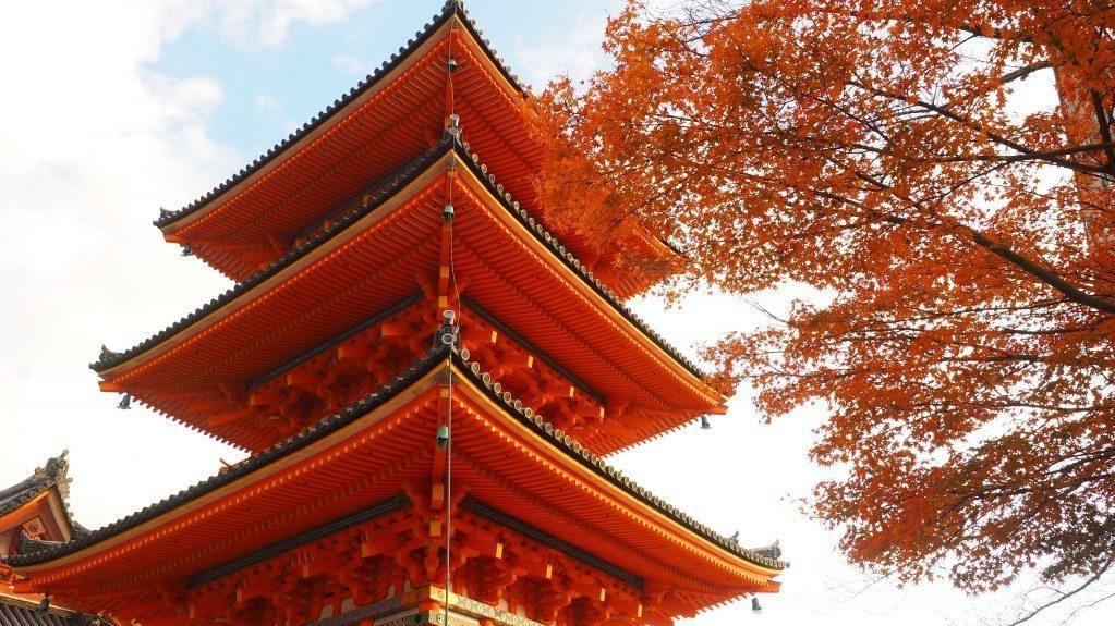 京都清水寺, 【京都景點】2020清水寺舞台:整修進度與現況公開(附近必吃美食、二三年坂景點)
