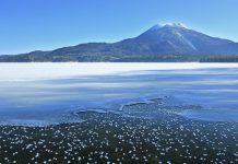 , 日本北海道自由行 ‧ 北海道旅遊指南