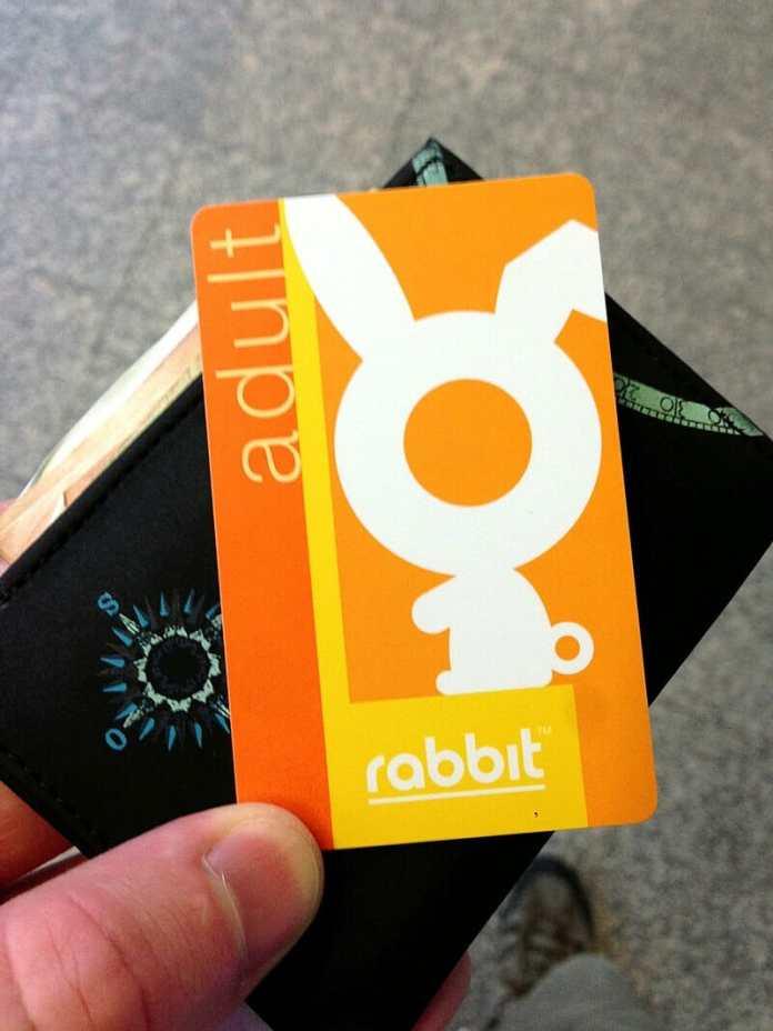 成人兔子卡
