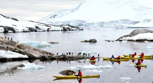 Kayakers at Petermann Island