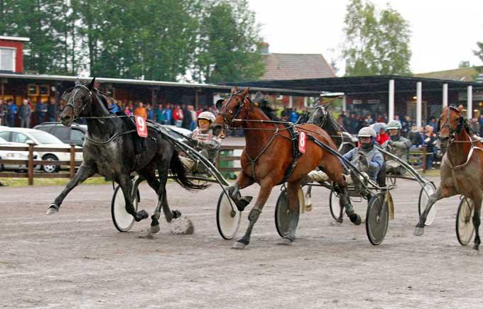 9 Rokkakodu med Stefan Søderkvist vandt overraskende 1. afdeling af V86-spillet. Kanal 75