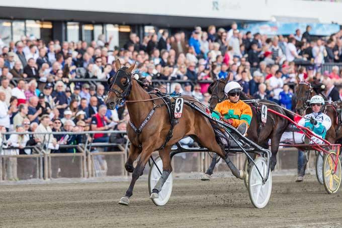 Billie de Montfort med Erc Raffin vand 4 års Eliten. Foto Eurik Stenhaug