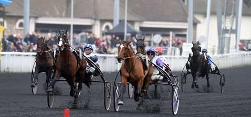 I Criterium des 3 Ans vandt Charly du Noyer i en spændende opløbskamp foran Cobra Bleu. Bliver resultatet det samme i dag? Foto Gerard Forni