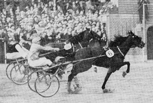 Ikke meget skilte indvendige Bellwod og Bjørn i Dansk Trav Derby 1940