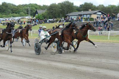 Inden finalen i Jydsk 4-årings Hoppe Grand Prix havde Jeppe Juel på vegne af Dusty Shadow (Andover Hall) udtalt, at han glædede sig til de store løb venstre rundt. Men at hesten også kunne højre rundt – ja, det beviste Dusty Shadow, da den efter en stor indsats sejrede i årets næststørste løb.