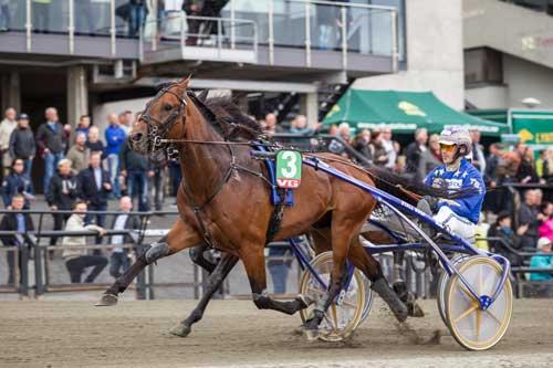 Bjørn Goo-trænede El Toto B R med Tom Eik Solberg vandt Kriteriet. Foto Eirk Stenhaug