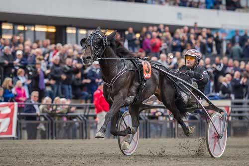 Glen Ord Superb vinder sikkert Norsk Trav Derby for Geir Vegard Gundersen, Foro Eirik Stenhaug