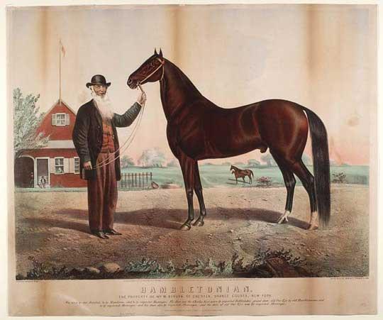 Hambletonian 10 med sin ejer WilliamRysdyk, der blev en megen holden mand på grund af sin hingst.