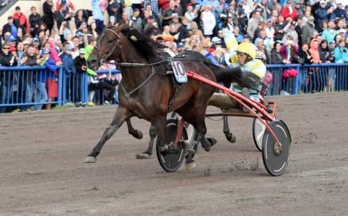 I fjor vandt Trebol med G. A. Pou Pou det finske storløb Kymi Grand Prix. Foto Gerard Forni