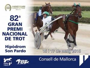 Son-Pardo-Diada-cartel-15