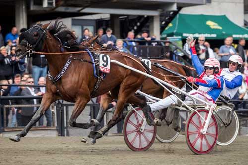 This is It med Per Oleg Midtfjeld vinder Norsk Hoppe Derby. Foto Eirik Stenhaug