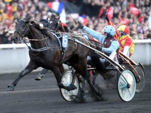 Up and Quiuck med Jean Michel Bazire vandt Prix d'Amerique i fjor. Men kan den gentage sejren i et ? Foto Gerard Forni