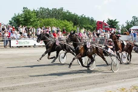 Sådan så det ud, da Apapmand med Anders F. Jensen i søndags vandt Sprintermesteren foran Amazing Dynamite, KMFoto