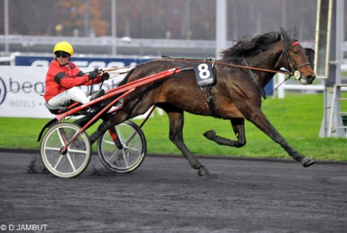 Bold Eagle med Franck Nivard