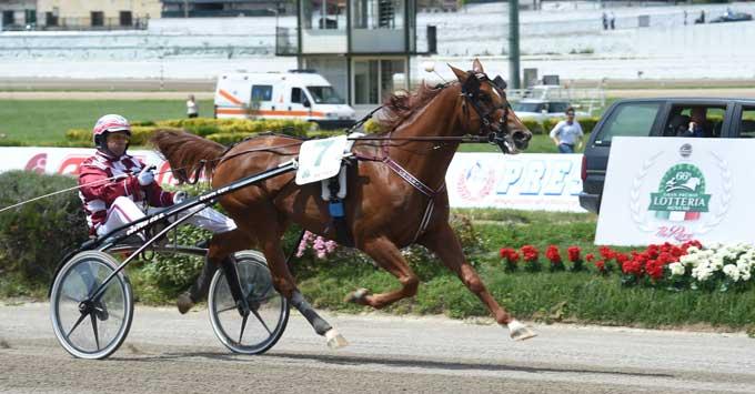 Chapeeau med Christophe Martens vandt let 1. afdeling. Foto Gerard Forni
