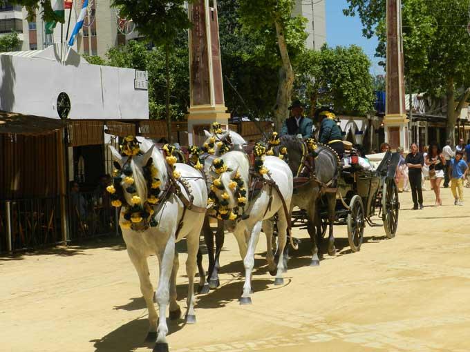 Spanierne er glade for at køre heste -  her et femspand set under Feria de Caballo i Jerez de la Frontera. KB Foto