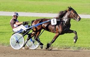 Lannem Silje med Tor Wollebæk. vandt til odds 1,00 i Vinder og Plads.  Kanal 75