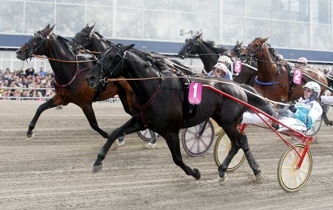 Magic Tonight vinder Elitlopps finalen for Ôrjan Kihlström. Kanal 75