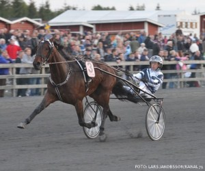 Obi Wan . her med Jærgen Sjunnesson er favorit i Kalmarsundpokalen. Foto Kanal 75