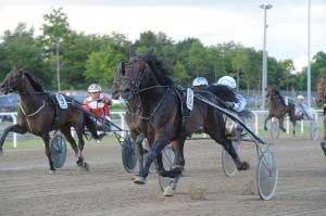 Odds On Scorpius ar vundet fire sejre for Flemming Jensen. Kan Bent Svendsen få den op i højere gear? Foto Ole Hindby