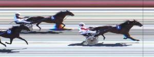Ronato vinder foran Haras du Pin