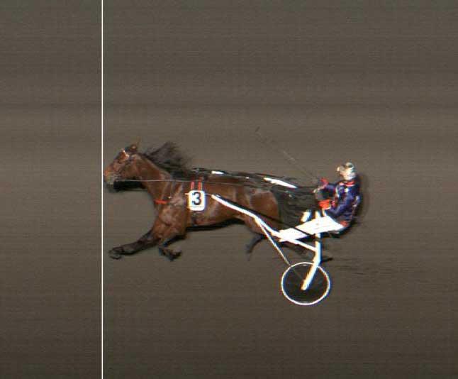 der ar kun én hest på banen i onsagens 5. løb på Jägersro - Gitte Madsen-trønede STARTINGTODAY EP med Birger Jærgensen