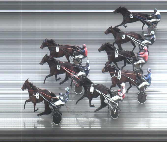 Der kom mange heste på mplfotoet, men Timber Mile vandt sikkert foran de ti andre danske hoppr, 8 US Sport og 11 Riana Criss, som næsten løb dødt løb!