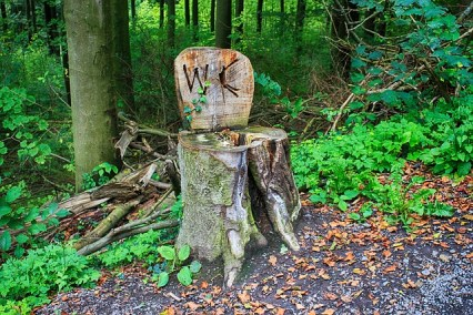 Buiten toilet in het bos