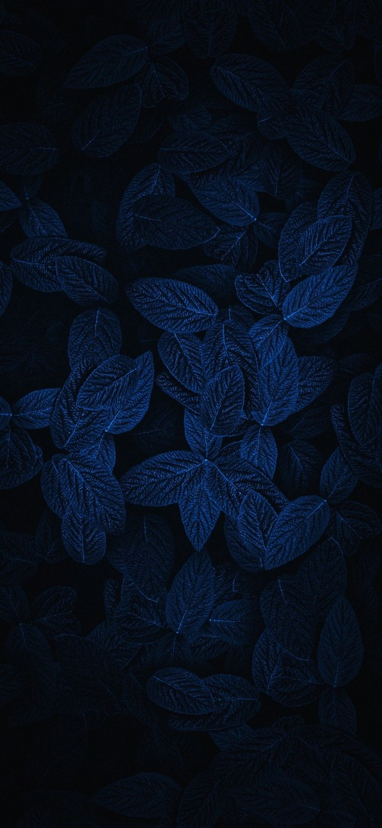 Dark Leafs Amoled Wallpaper Download for Motorola Moto G8 Power