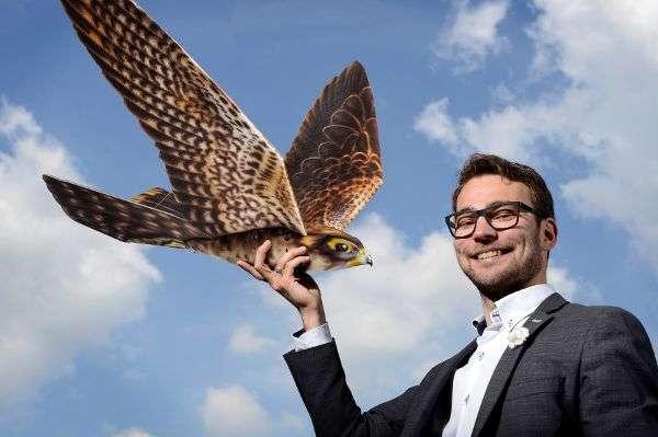 TRD Nachrichten aus der digitalen Welt: Roboter Vögel erobern die Lüfte