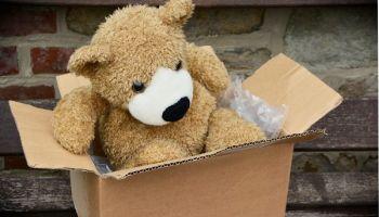 Teddy im Karton