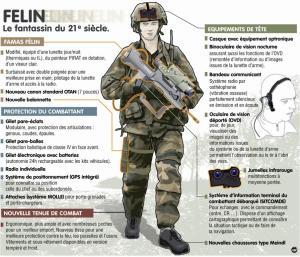 systeme-d-arme-felin