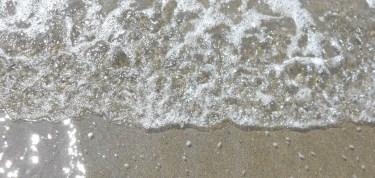 cropped-dscn0581.jpg